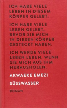Akwaeke Emezi: Süßwasser