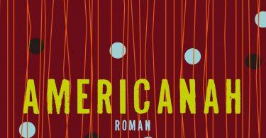 C. N. Adichie: Americanah