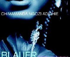 Blauer Hibiskus, C. N. Adichie